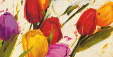 Tulips Poster by Antonio Massa