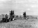 Tractor Used to Pull Two Combines on a Big Wheat Farm Near Spearman, Texas, 1942 Photo