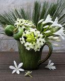 Flowers in a Vase Kunstdrucke von Catherine Beyler