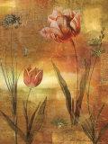 Tulip Garden II Art by John Seba