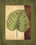 Palm Tropical IV Prints by Delphine Corbin
