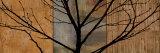 Arboreal I Prints by Chris Donovan