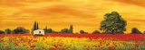 Field of Poppies Posters by Richard Leblanc