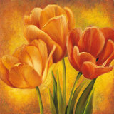 Orange Tulips II Print by David Pedersen