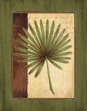 Palm Tropical I Prints by Delphine Corbin