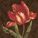 Tulipa II Print by Jillian Jeffrey