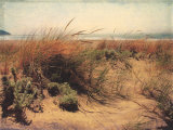 Sand Dunes I Posters by Amy Melious