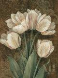 Petit Jardin Tulips Poster by Pamela Gladding