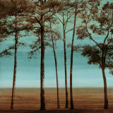 Azure I Posters af Chris Donovan