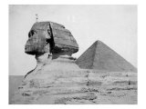The Great Pyramid and the Sphinx Photo