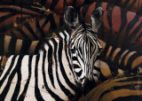 Zebras Posters by Marianne Julie Jegou