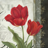 Etude en Rouge II Prints by Pamela Gladding