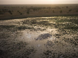 A drying water hole in the Rigueik Plain Photographic Print by Michael Nichols