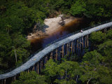Pedaling above the Rio Negro and rainforest northwest of Manaus Photographic Print by Bobby Haas