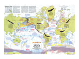1976 Great Whales, Migration and Range Map Posters by  National Geographic Maps