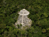 Jungle surrounds the Lamanai Maya ruins northwest of Belize City Photographic Print by Bobby Haas