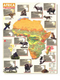 Africa Threatened Map 1990 Print