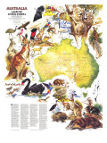 Australia, Land Of Living Fossils Map 1979 Poster