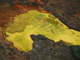 A peat bog formation resembling a horse's head north of Punta Arenas Photographic Print by Bobby Haas