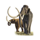 Artwork of a mammoth and a mastodon Photographic Print by Raul Martin