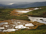 The Numanodaira wetlands' swirl of lakes, bogs, and beech forests Photographic Print by Michael S. Yamashita