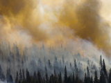 The Waterton-Glacier International Peace Park Forest fire. Photographic Print by Michael Melford