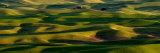 The Palouse Hills of southeastern Washington State Photographic Print by Jim Richardson