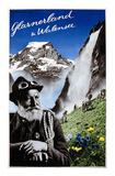 Glarnerland & Walensee Print by Herbert Matter