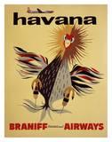 Braniff International Airways, Havana Art