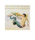 Triton Giclee Print by Pietro Candido Decembrio