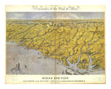 North and South Carolina and Part of Georgia, c.1861 Prints by John Bachmann