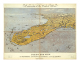 Florida and Part of Georgia and Alabama, c.1861 Prints by John Bachmann
