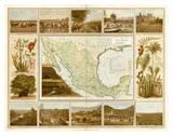 Carta Agricola, c.1885 Prints by Antonio Garcia Cubas