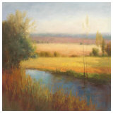 Serenity Marsh I Prints by Quan Yong Xu