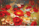 Lucas Santini - Meadow Poppies I - Poster