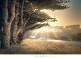 William Vanscoy - No Place To Fall Obrazy