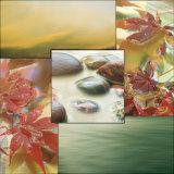 River Rocks I Plakater af Donna Geissler