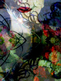 Floral Dream Photographic Print by Alaya Gadeh
