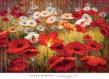 Lucas Santini - Meadow Poppies II - Reprodüksiyon