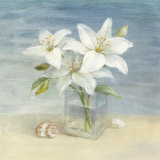 Lilies and Shells Prints by Danhui Nai