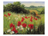 Prado iluminado por el sol Lámina giclée premium por Mary Dipnall