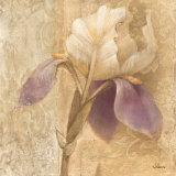 Brocade Iris Posters by Albena Hristova