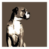 Boxer Giclee Print by Emily Burrowes