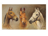 We Three Kings Premium Giclee Print by Susan Crawford