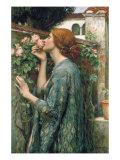The Soul of the Rose, 1908 Giclee-tryk i høj kvalitet af John William Waterhouse