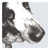 Bassett Hound Giclee Print by Emily Burrowes