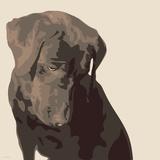 Chocolate Labrador Premium Giclee Print by Emily Burrowes