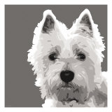 West Highland Terrier Premium Giclee Print by Emily Burrowes