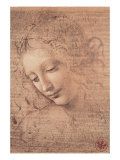 Cabeza de mujer, ca. 1508 Lmina gicle por Leonardo da Vinci