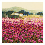 Le Jardin Rouge, Provence Premium Giclee-trykk av Hazel Barker